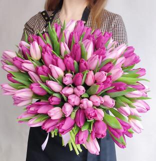 101 tulipánů