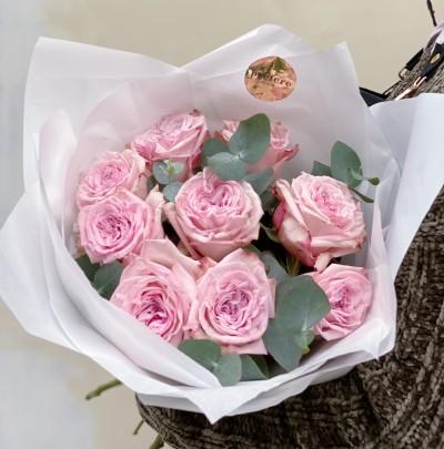 9  Pivoňkových růže Pink O´Hara