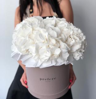 Hydrangeas in a hat box