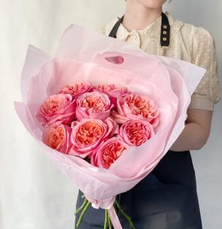 9  Pivoňkových růže Pink Expression