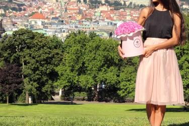 Pohádka o lásce a růžích