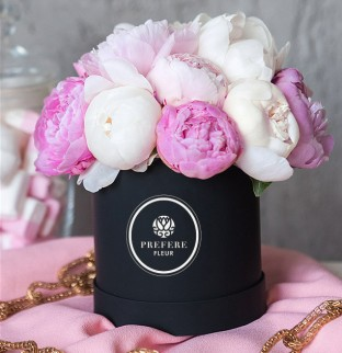 Peony in a hat box Black