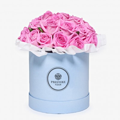 Růže Aqua v kloboukové krabici Demi
