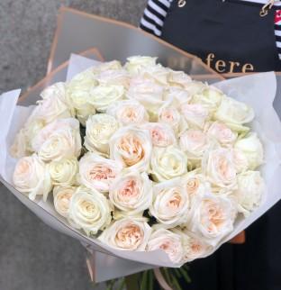 Pivońkové růže White O'Hara
